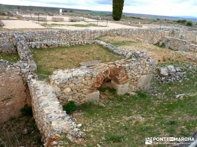 Yacimiento Clunia Sulpicia - Desfiladero de Yecla - Monasterio Santo Domingo de Silos - excursiones